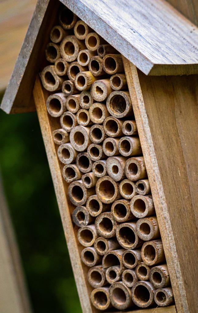 Maison à abeille